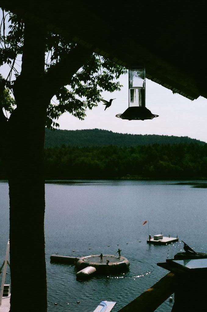 End of summer vacation in the Adirondacks - image 3 - student project