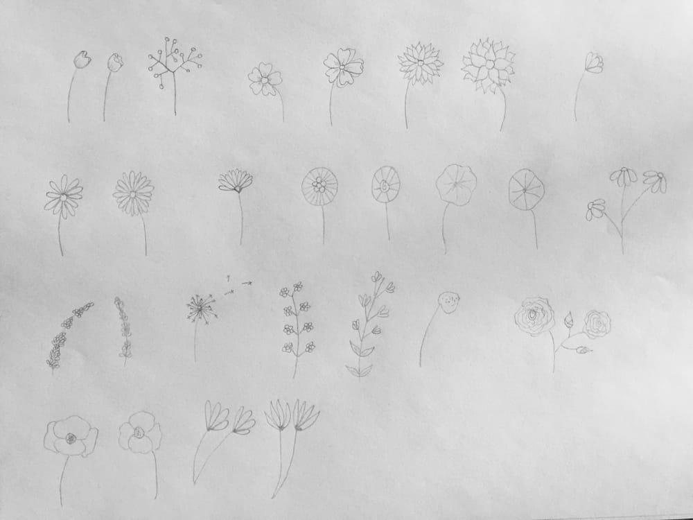 Botanical Doodles - image 1 - student project