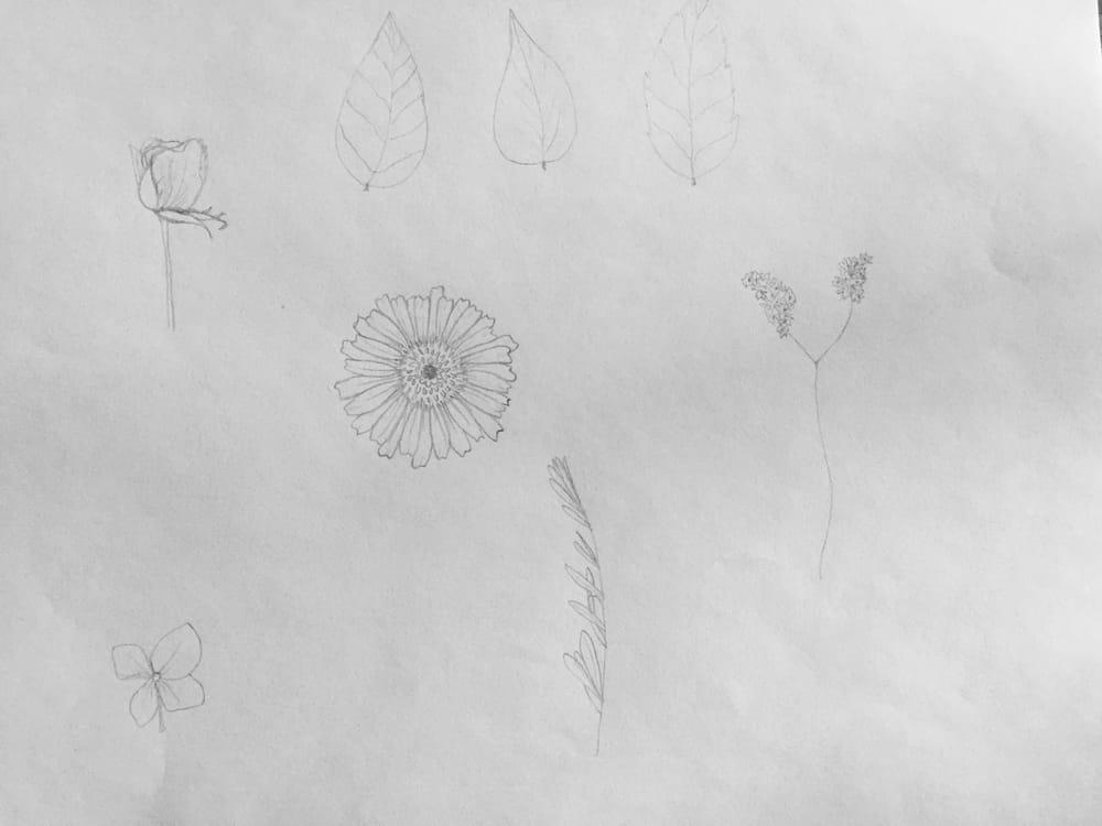 Botanical Doodles - image 3 - student project