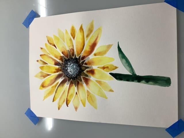 Bitchin Botanicals - image 4 - student project
