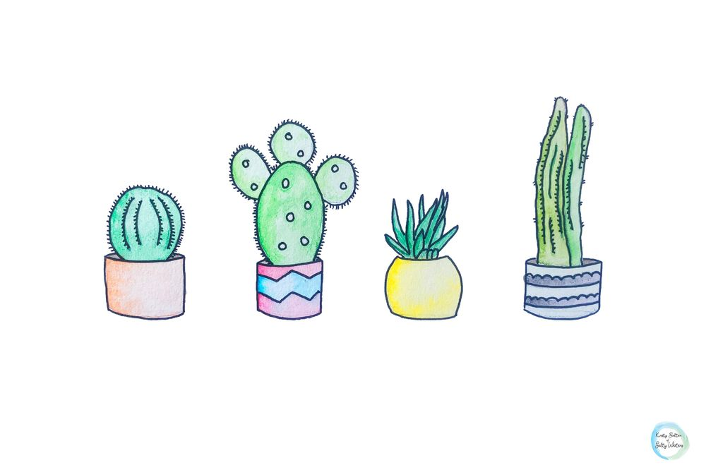 Family of Cactus's - image 1 - student project