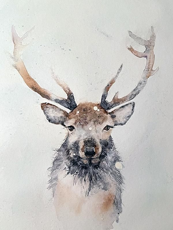 Stag - image 1 - student project