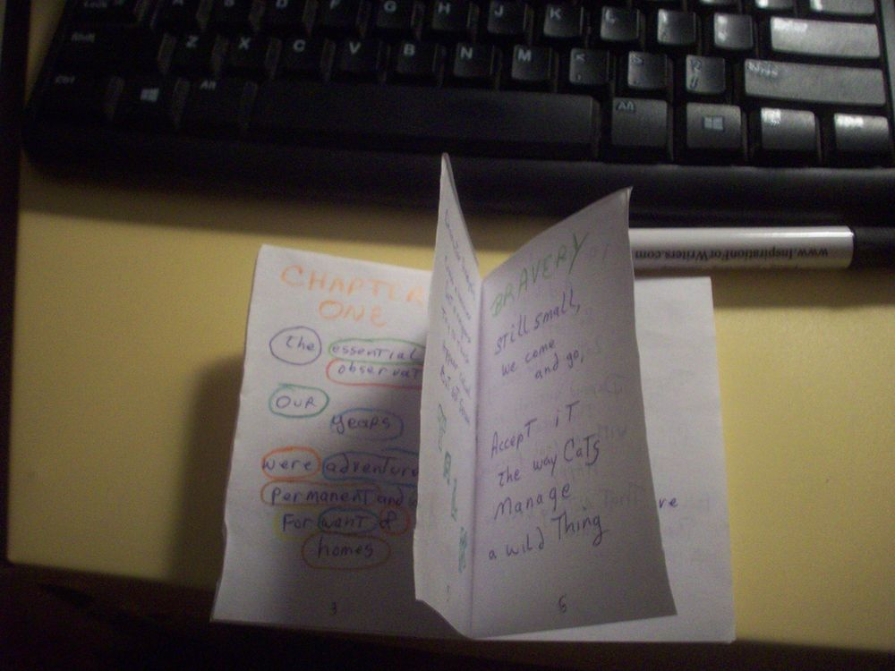 First Zine (Template and blank zine) - image 1 - student project