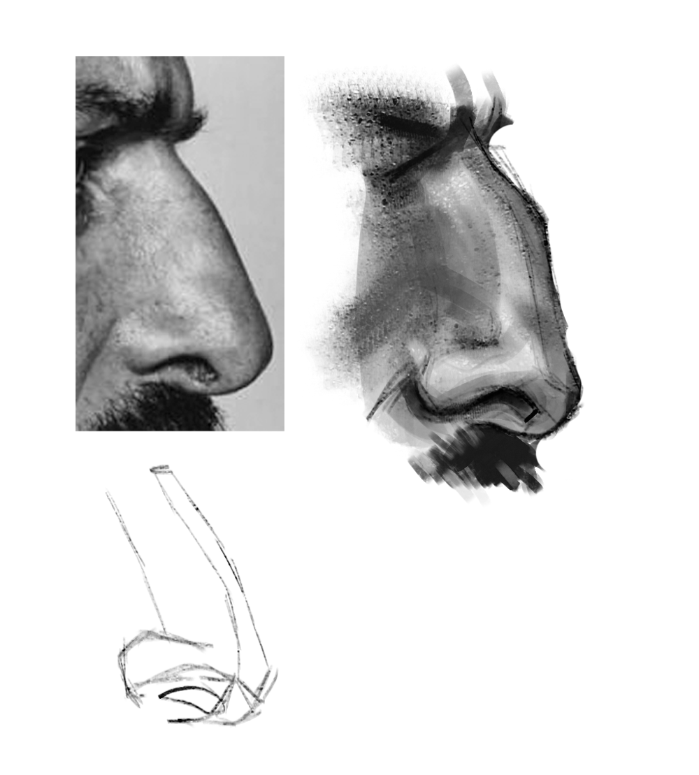 Nose practice - image 2 - student project
