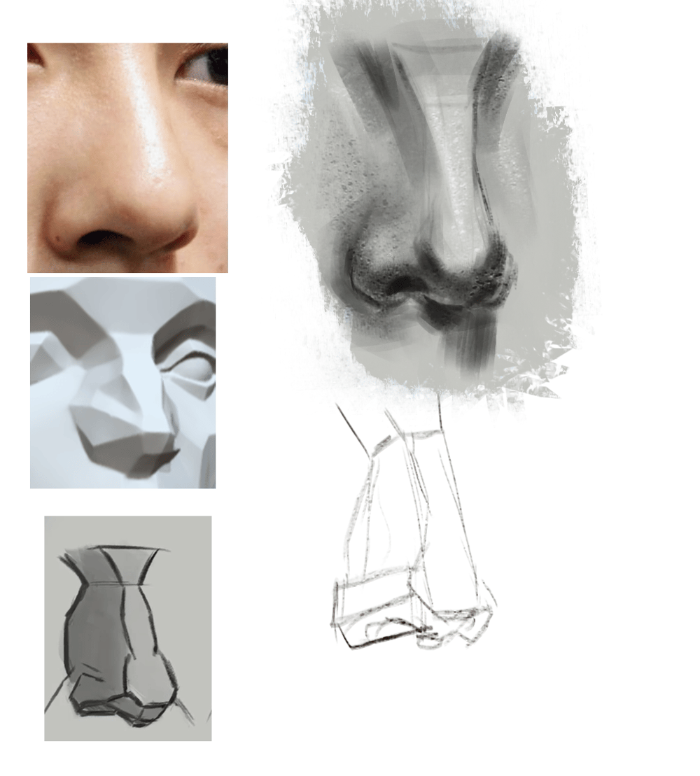 Nose practice - image 1 - student project