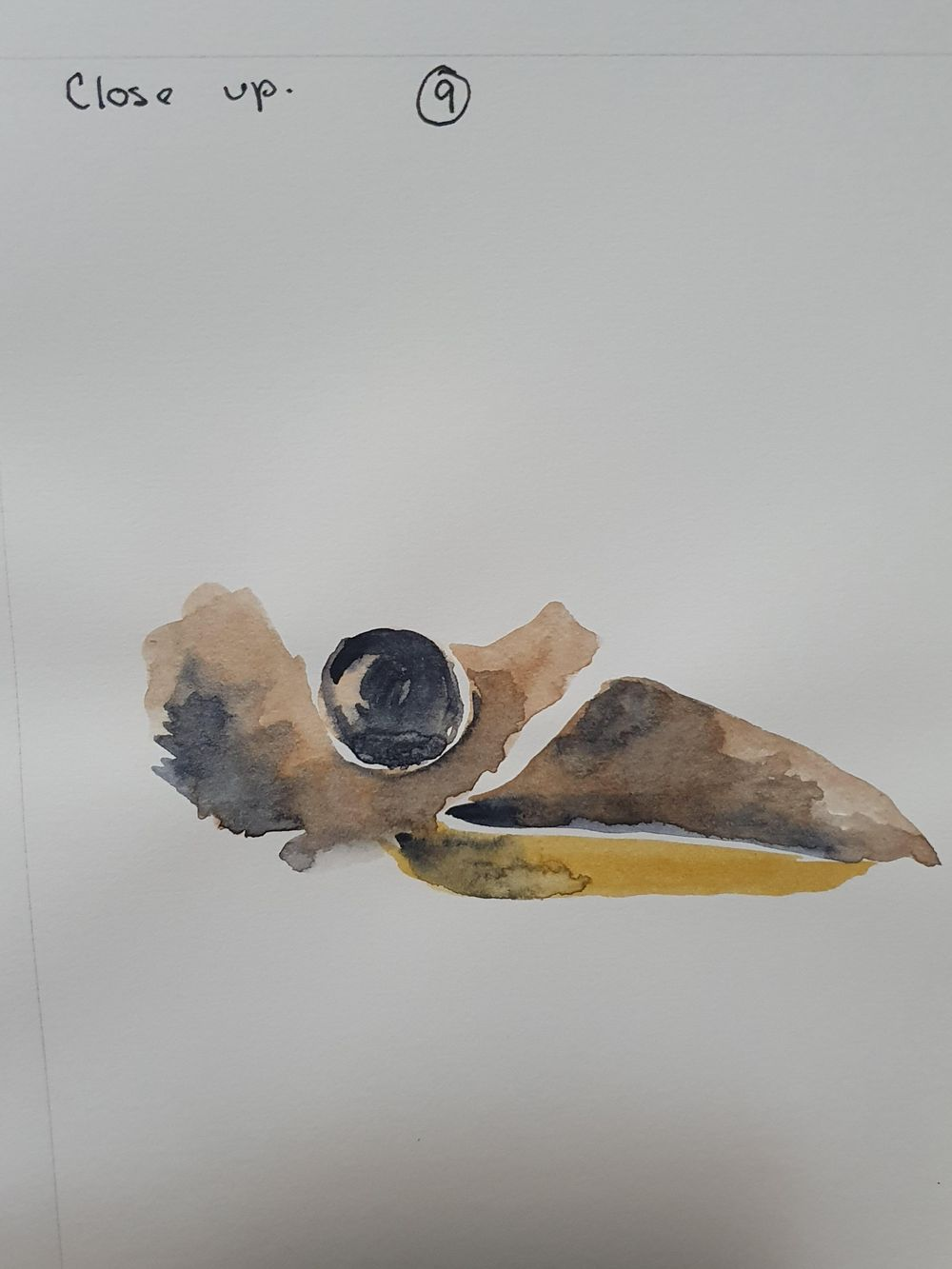 Kay Kookaburra - image 9 - student project