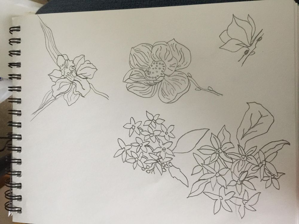 Life in Bloom - image 4 - student project