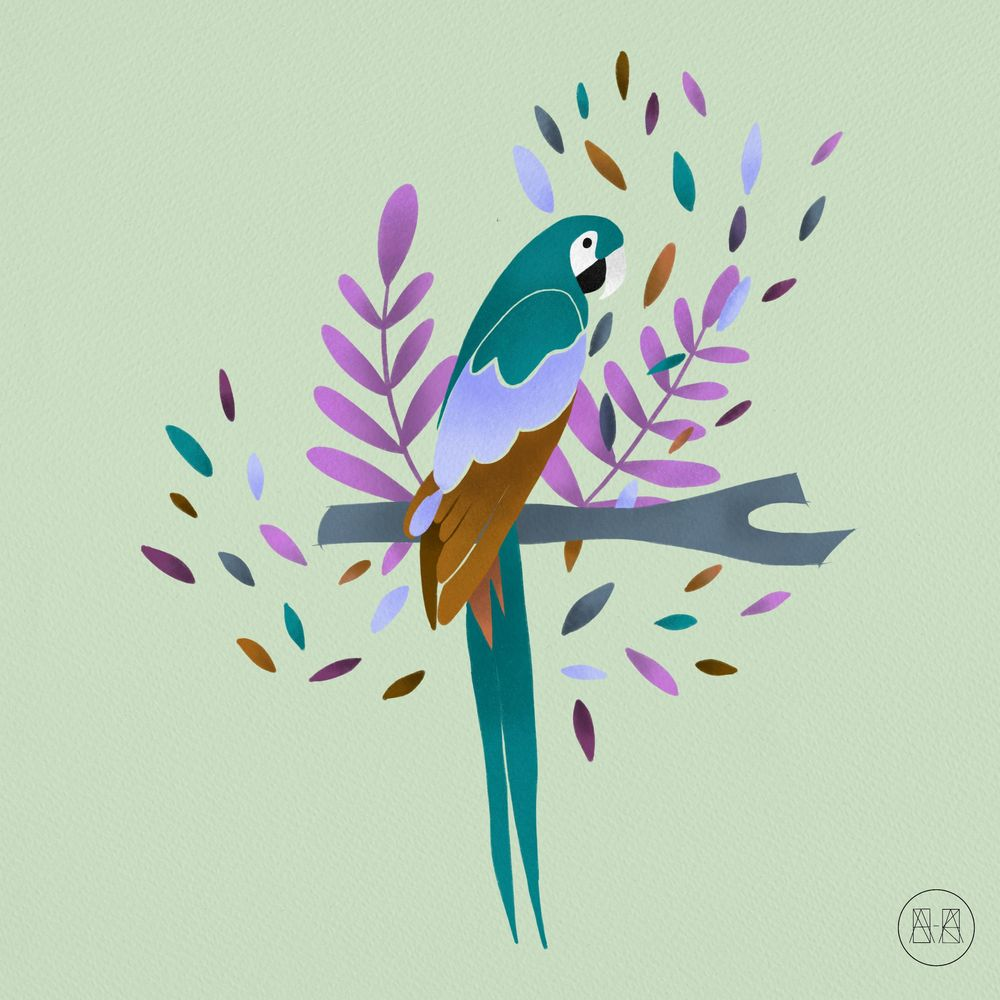 Parrot - image 3 - student project