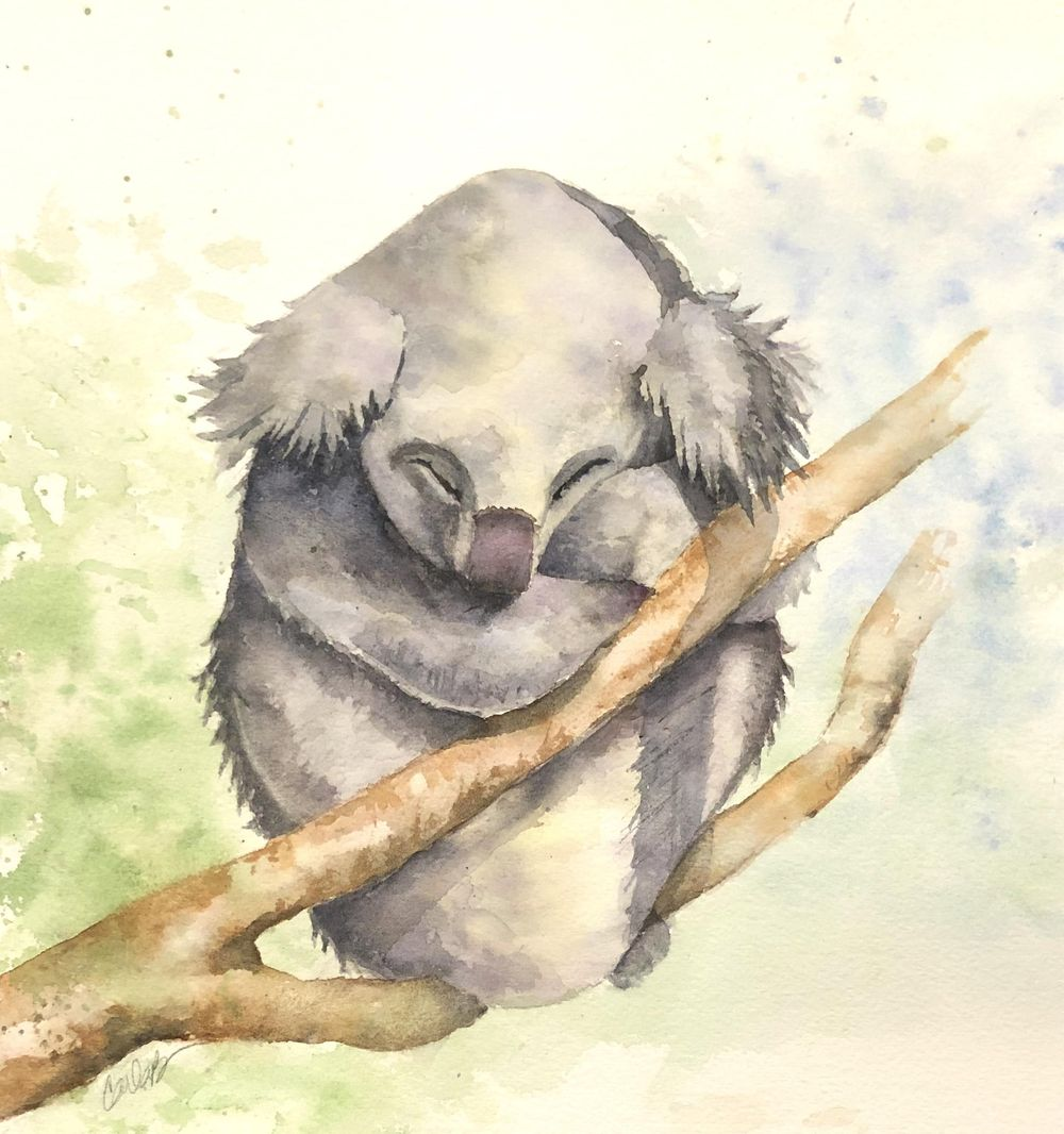 Carla's Koala - image 1 - student project
