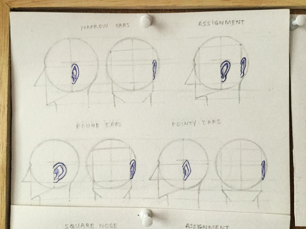 Draw Ears and Noses - image 1 - student project