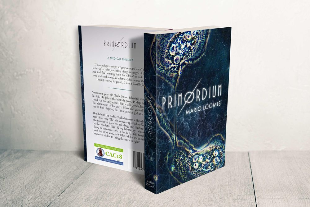 Book Formatting (2): A Whitewashed Tomb & Primordium - image 8 - student project