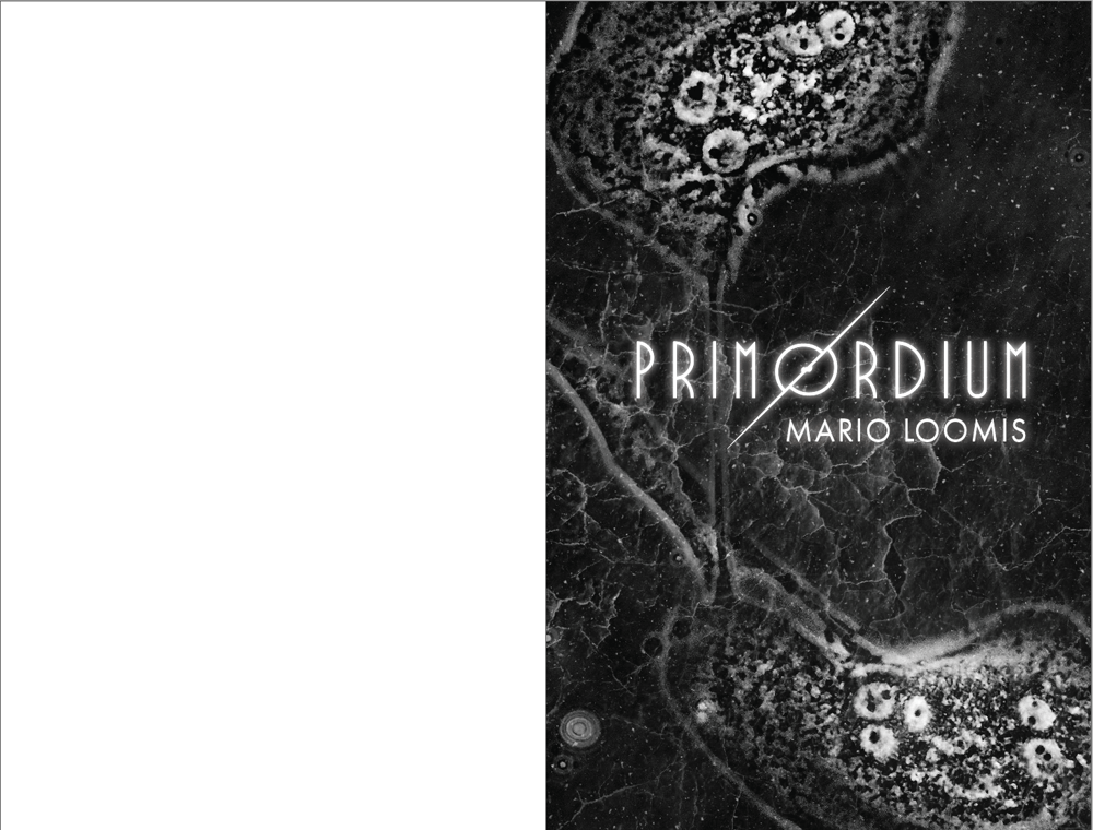 Book Formatting (2): A Whitewashed Tomb & Primordium - image 9 - student project
