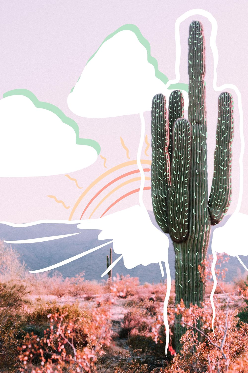 Cactus, mandala and lettering - image 3 - student project