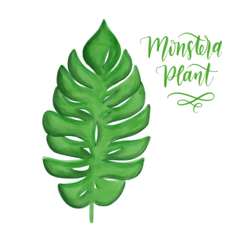 Digital Monstera Plant - image 1 - student project