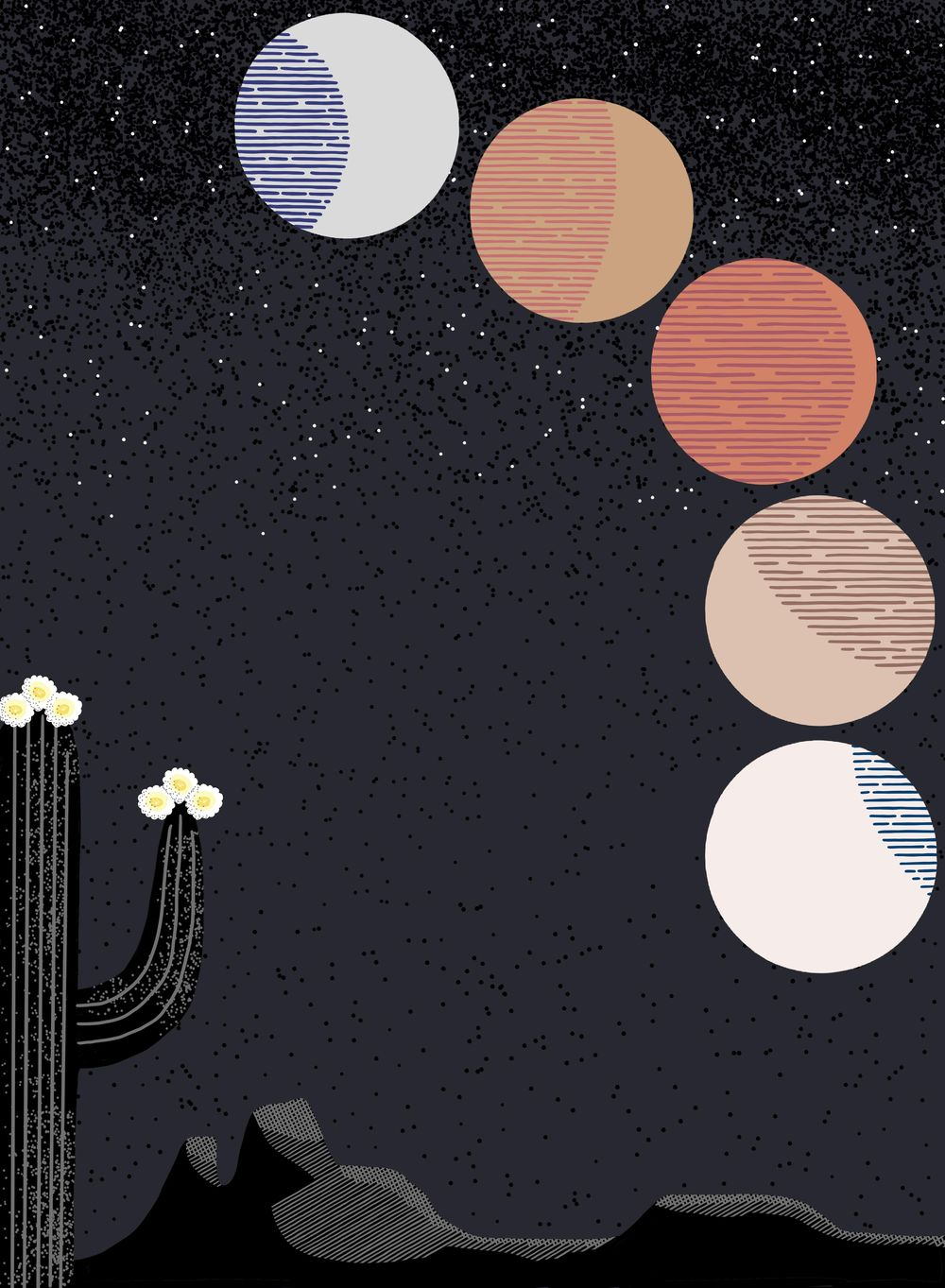 Lunar Eclipse In The Desert - image 1 - student project