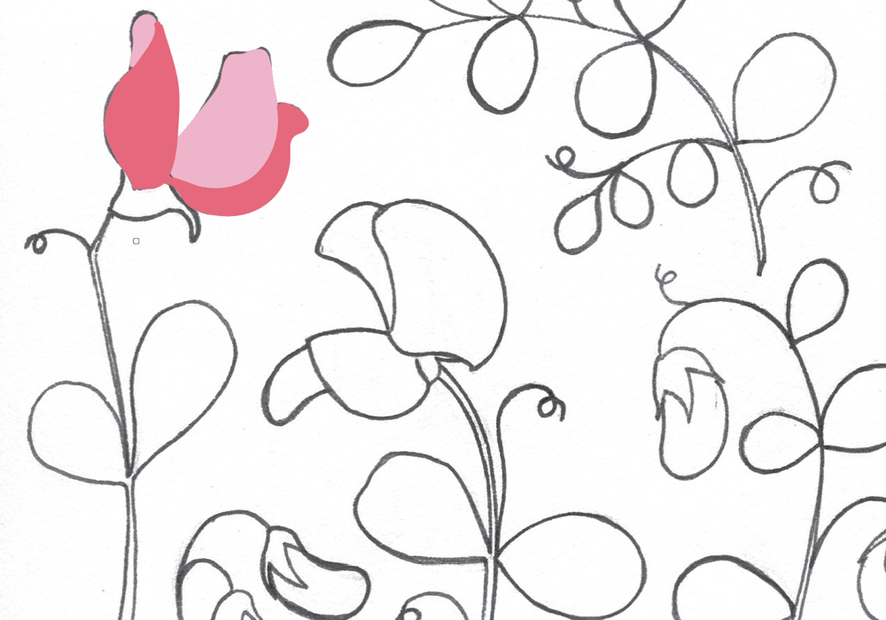 Sweet peas floral pattern - image 3 - student project