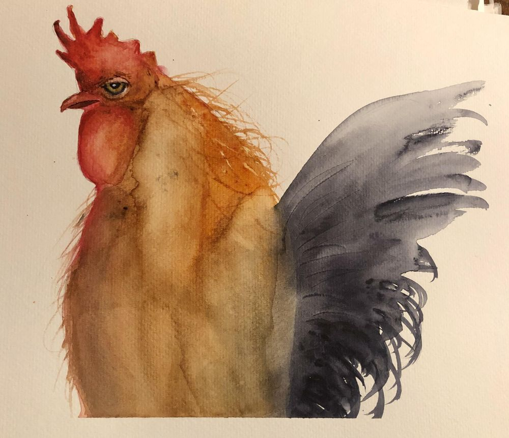LB Rooster - image 1 - student project