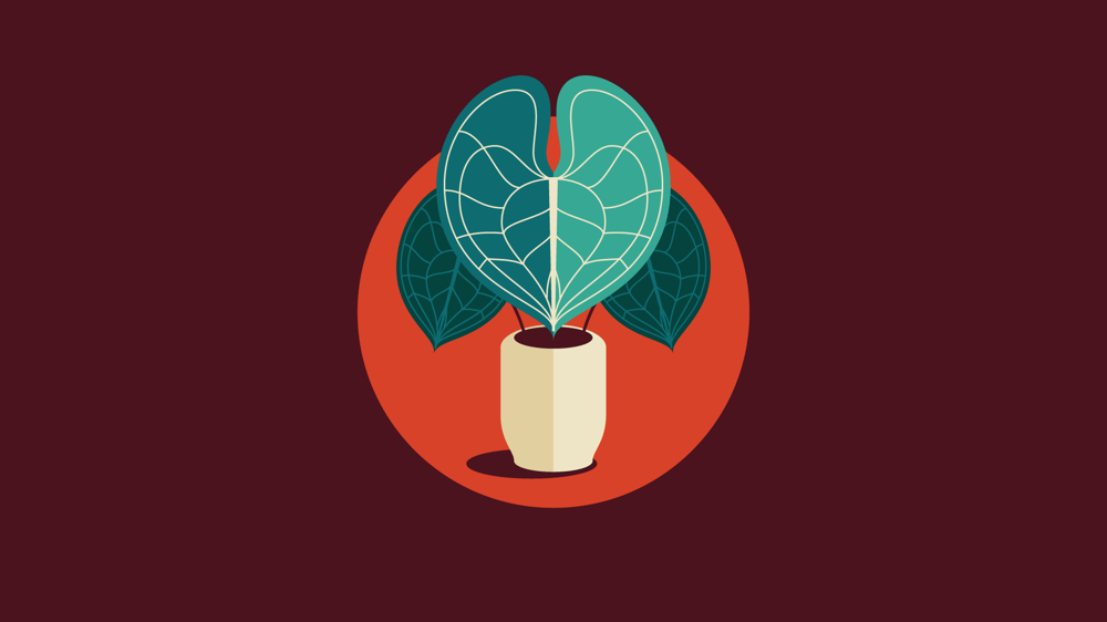 Plant Icon Set - image 5 - student project