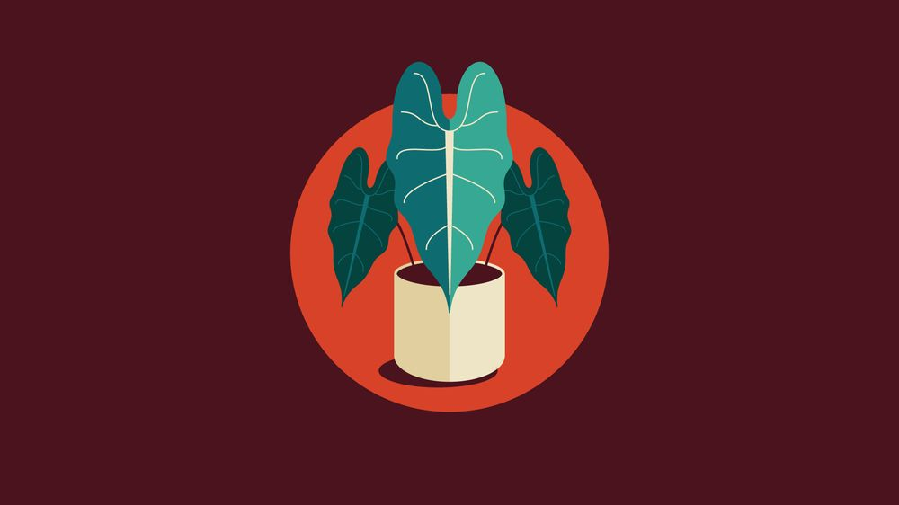 Plant Icon Set - image 4 - student project