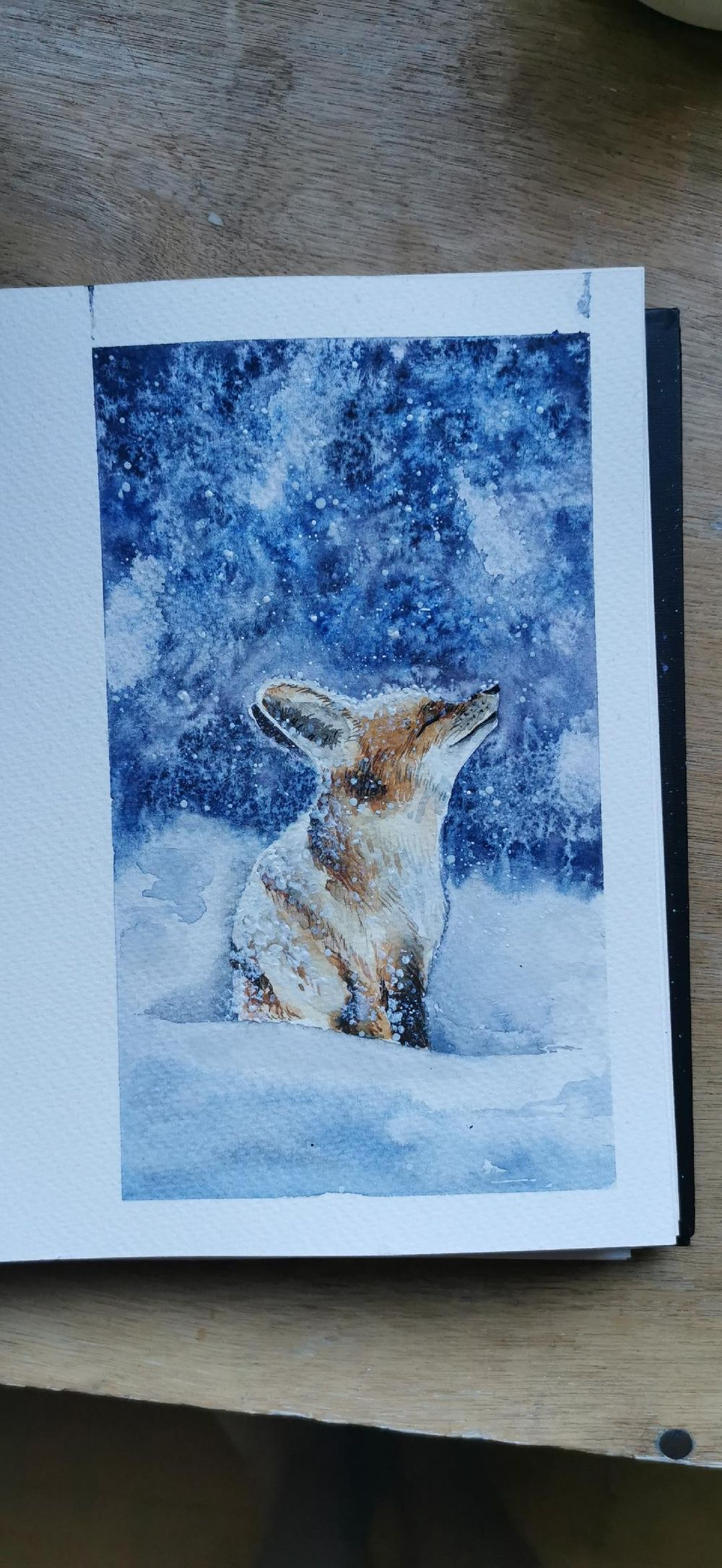 Snowy fox - image 2 - student project