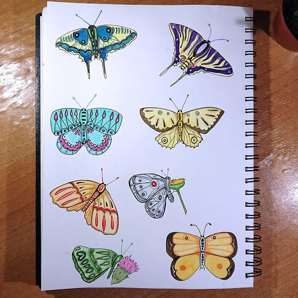 My butterflies - image 1 - student project