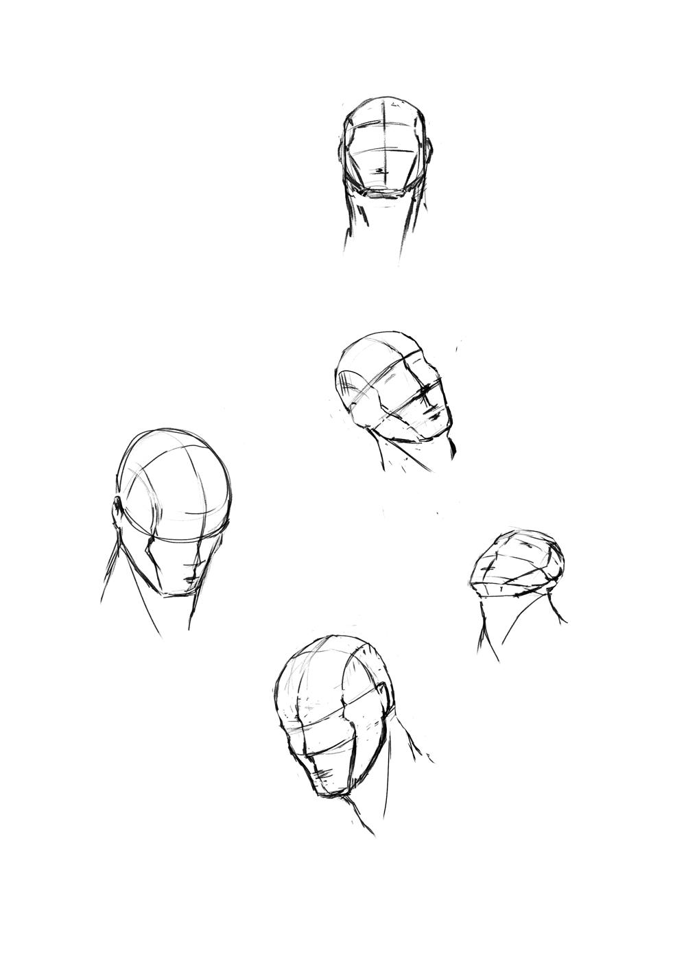 Head Angle Study - image 2 - student project