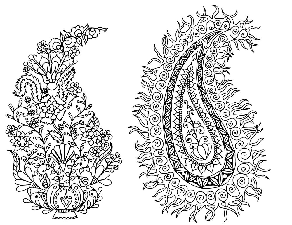 Fun with Paisley - image 2 - student project