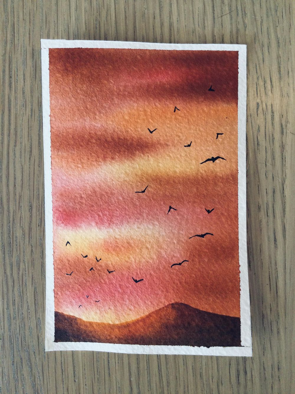 birds in the sky - image 13 - student project