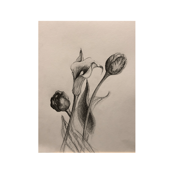 Basic Skills/Getting Started with Drawing - image 2 - student project