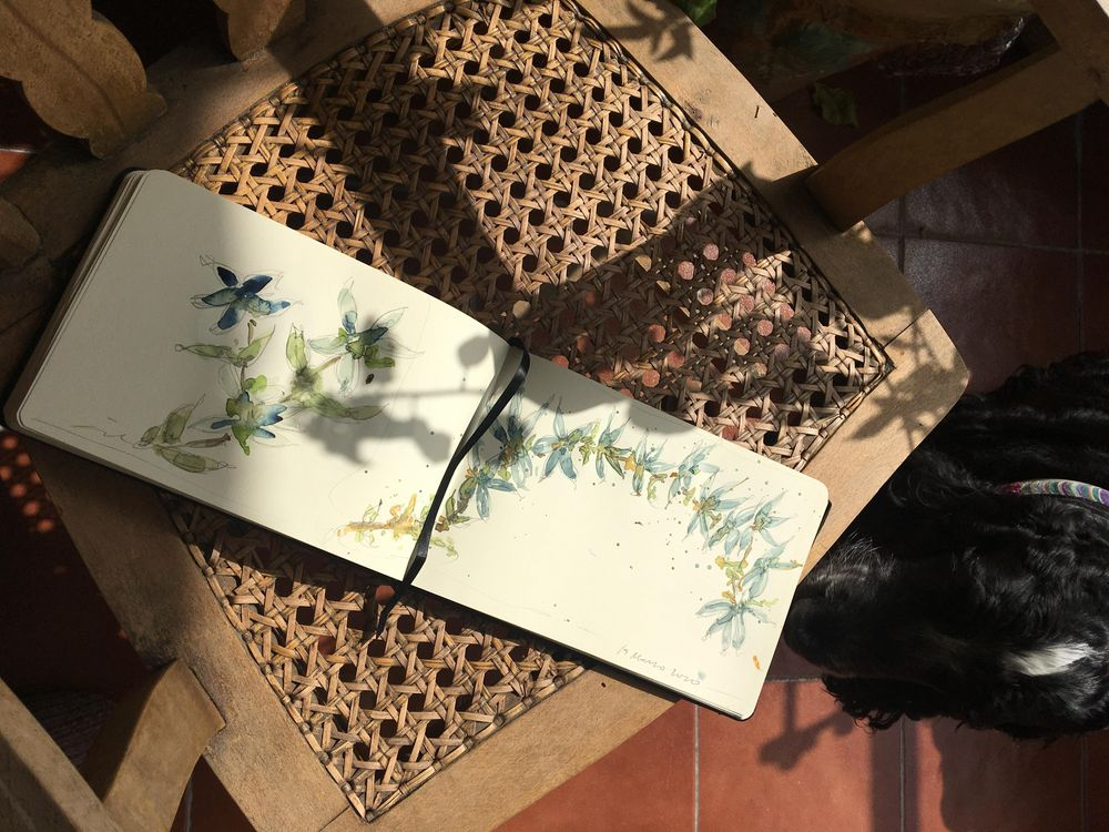 Blue flowers - image 1 - student project