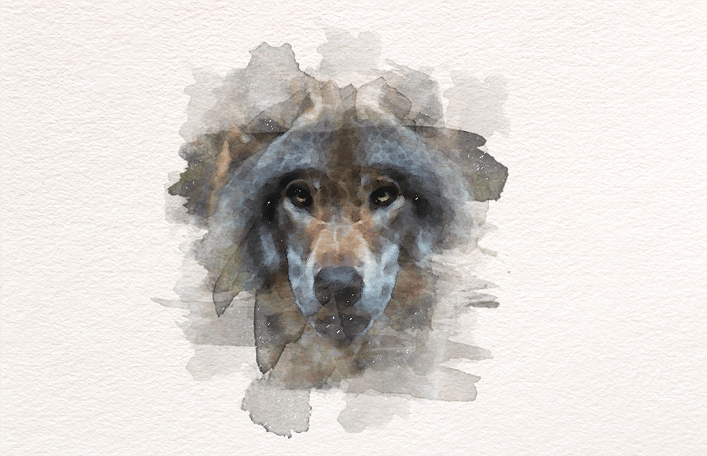 Watercolor Wolf - image 2 - student project
