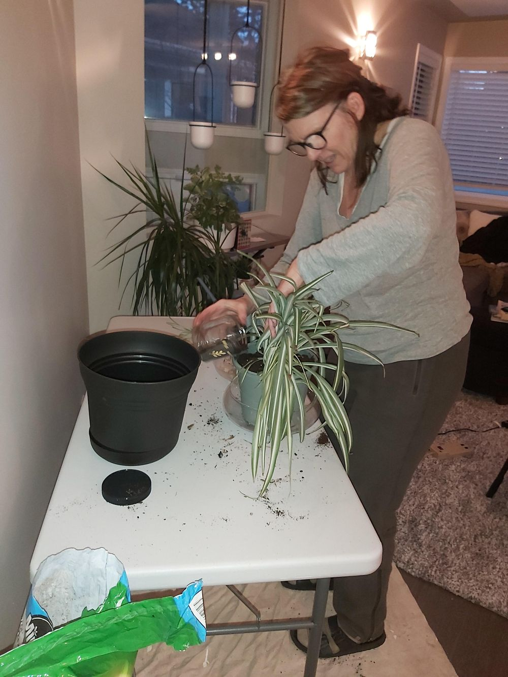 My new plant space - UPDATE :-) - image 2 - student project