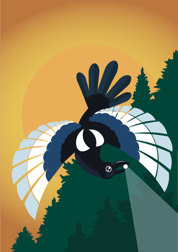 Adobe Illustrator: Projects - image 1 - student project