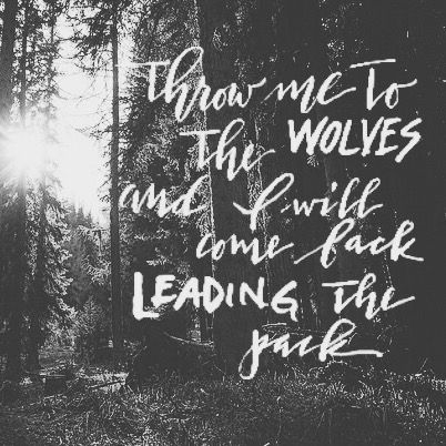 Throw me to the wolves... - image 1 - student project