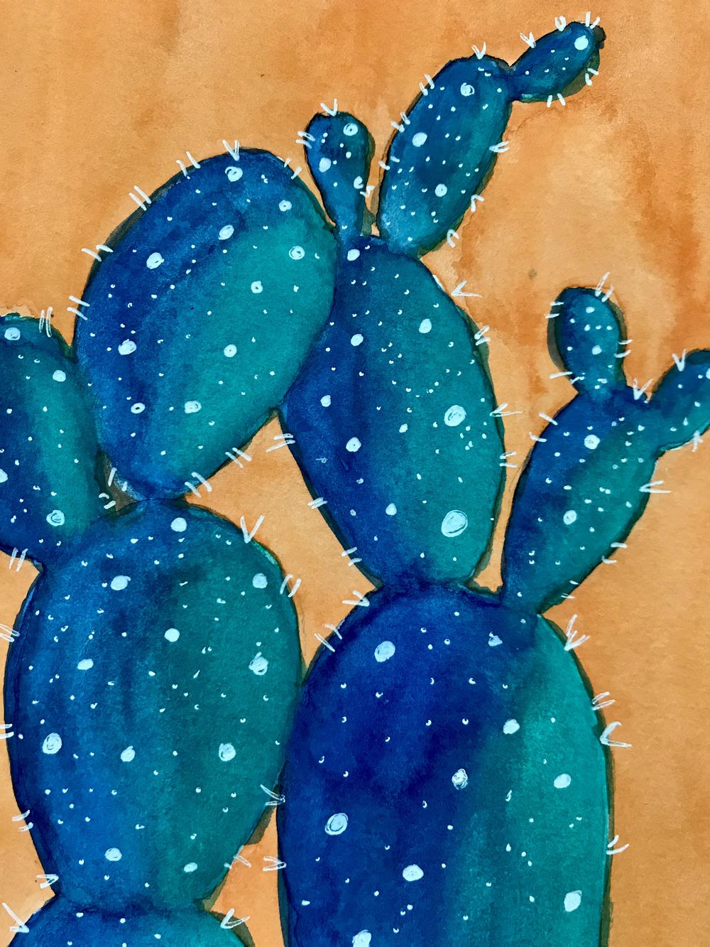 colorful cacti - image 1 - student project