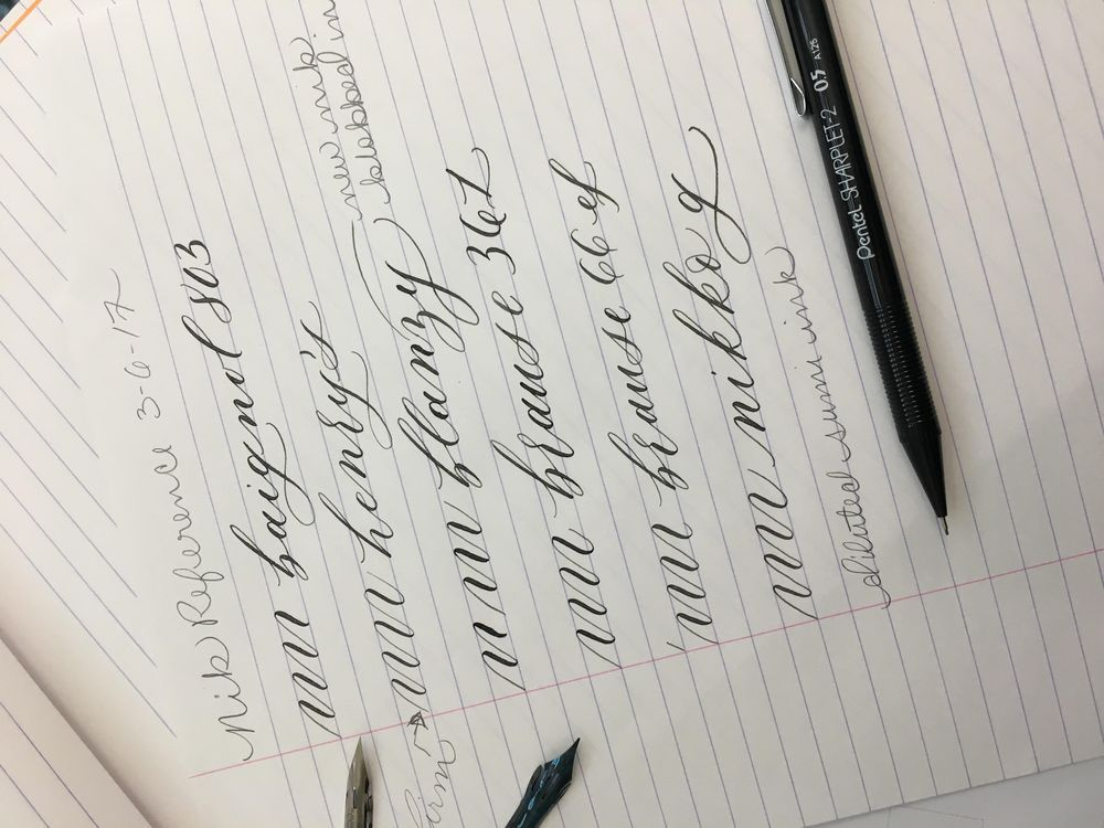 Calligraphy Nib Reference  - image 1 - student project