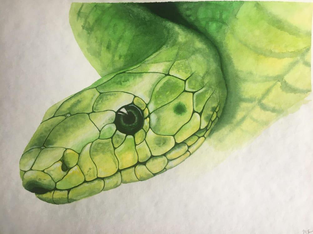 fox, flamingo, snake - image 2 - student project