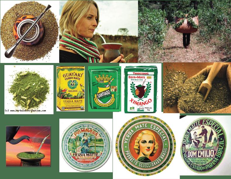 Chimaraw: Premium Super Food Erva Mate - image 1 - student project