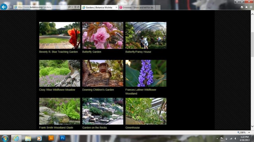 Wichita's Botanica Gardens Icons  - image 3 - student project