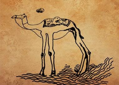 camel cuter characters - image 2 - student project
