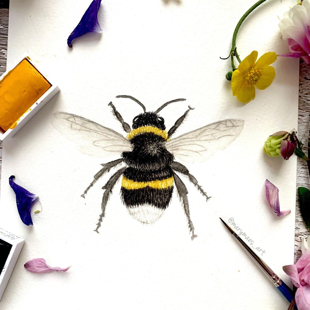 Busy Bumblebee - image 2 - student project