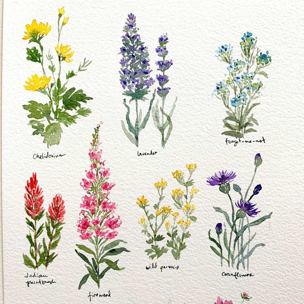 Pretty Little Wildflowers - image 2 - student project