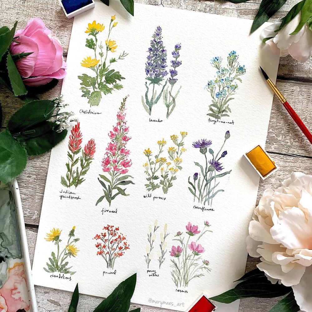 Pretty Little Wildflowers - image 1 - student project