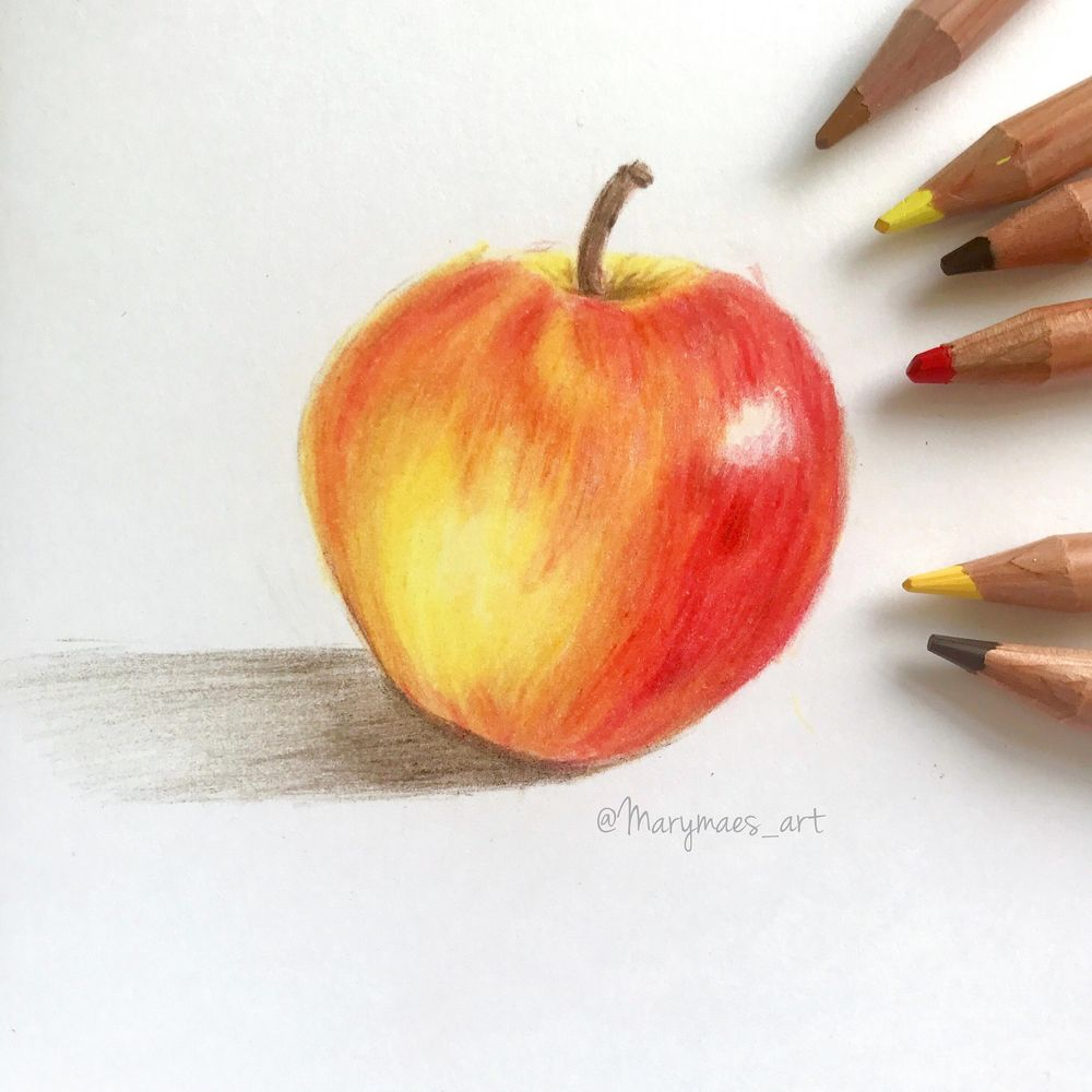 First Try at using Coloured Pencils - image 2 - student project