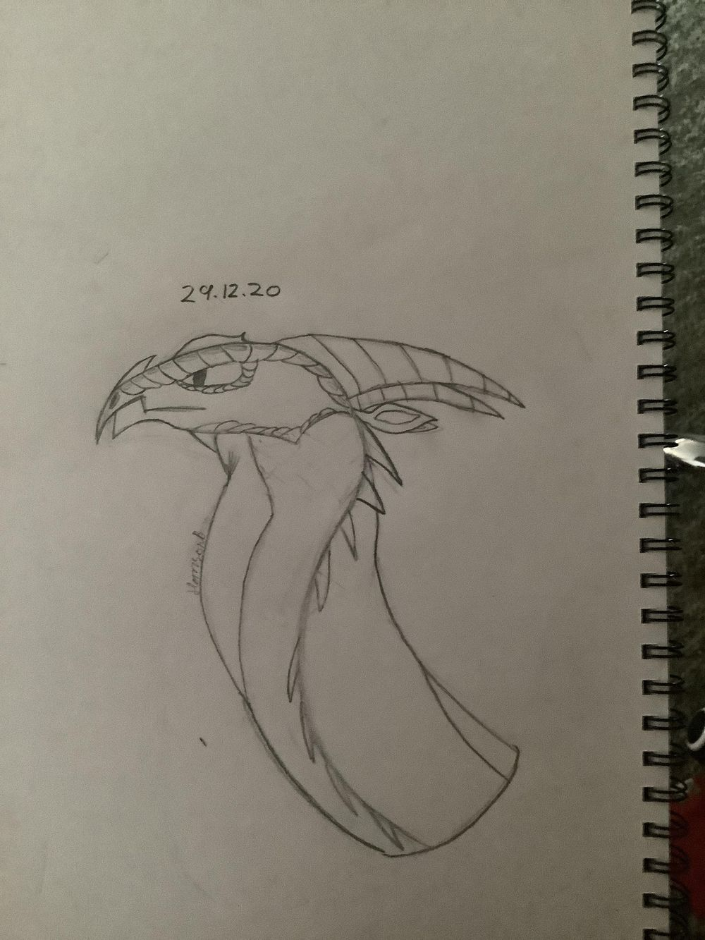 Razor Wing - image 1 - student project