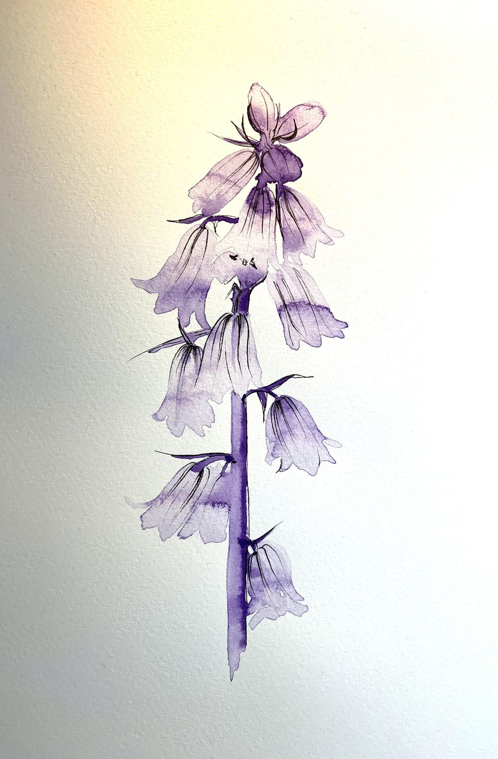 Loose Watercolour Florals - image 7 - student project