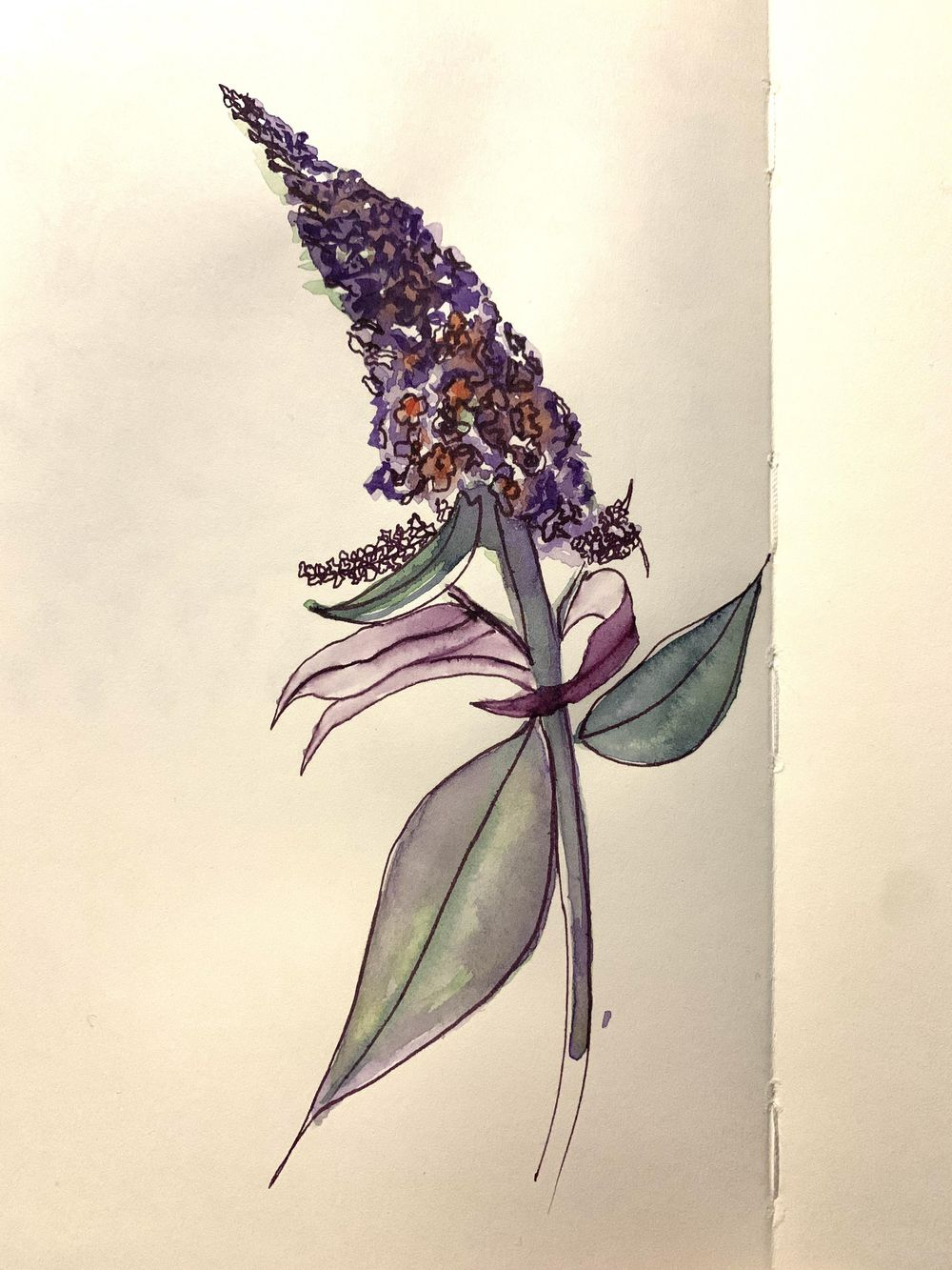 Loose Watercolour Florals - image 4 - student project