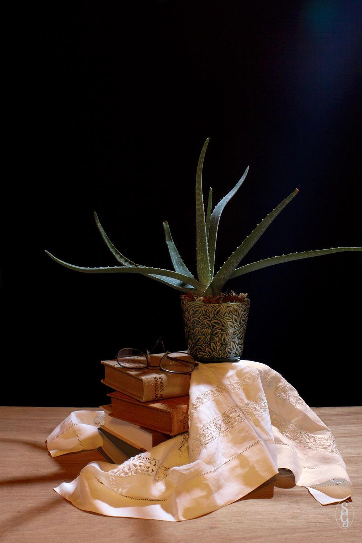 Aloe, et al - image 4 - student project