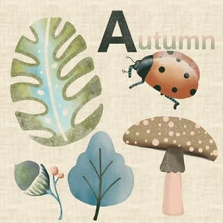 Autumn inspiration - image 1 - student project