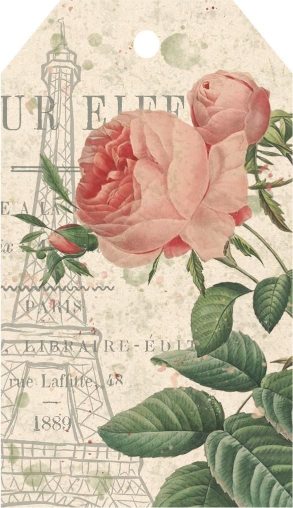 Eiffel Tower Rose - image 1 - student project